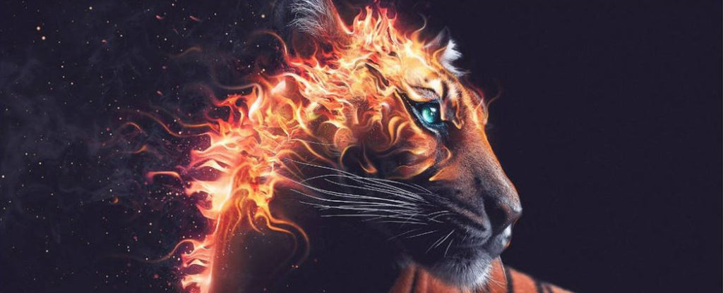 FIRE IN THE HEAD OF A TIGER