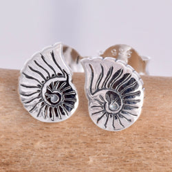 S584 - Nautilus shell silver stud earrings