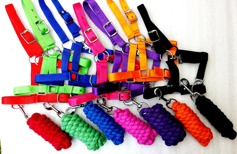 Halters & Lead sets - Mini to Full size in all colors