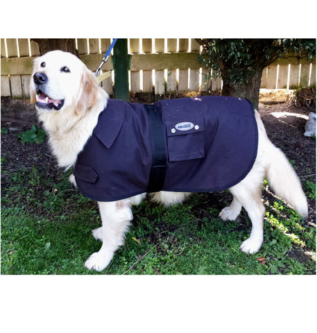 Oilskin dog coats
