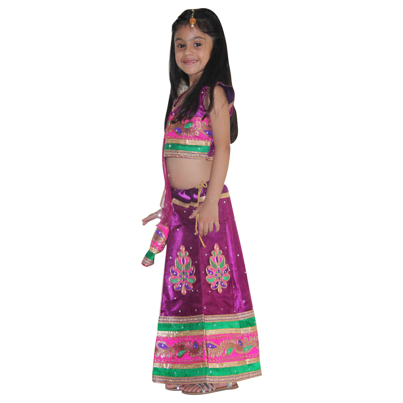 Radha Embroidered Lace Chaniya Choli-Purple
