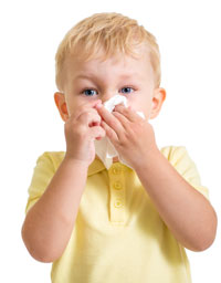 How Air Purifiers Can Relieve Allergy Symptoms | Air