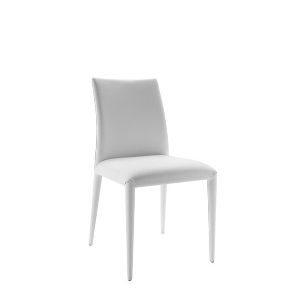 Italian Modern Dining Chairs