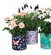 Enamel Plant Pot - Butterfly and Wild Rose