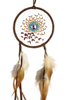 "4"" Energy Flow Dream Catcher - Goldstone"