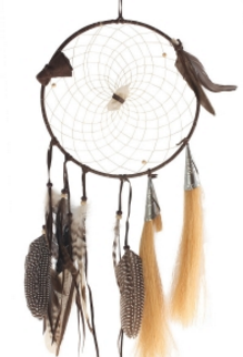 "9"" Dream Teachings Dream Catcher"
