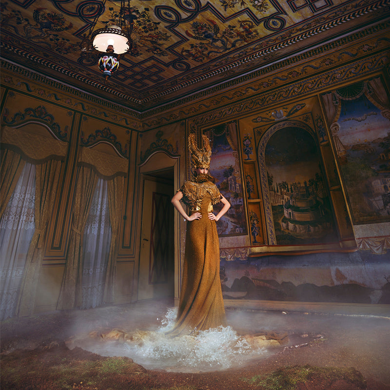 Miss Aniela Collection