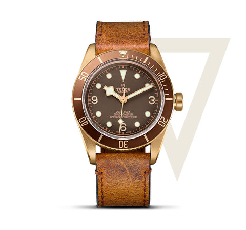 New Tudor Heritage Black Bay Bronze