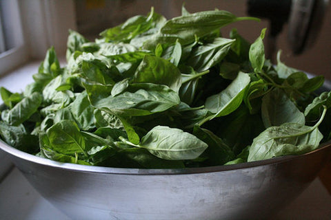 Basil – Fused & Infused EVOO