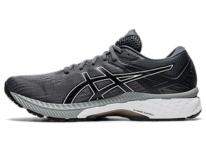 Asics Men's GT 2000v9 2E (Wide)