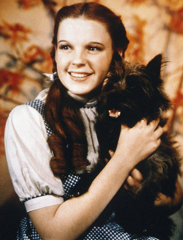 Dorothy from Wizard of Oz inspiration
