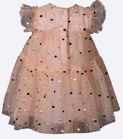 Emma Embroidered Dot Dress