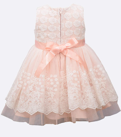 Baby Girls Party Dress embroidered organza