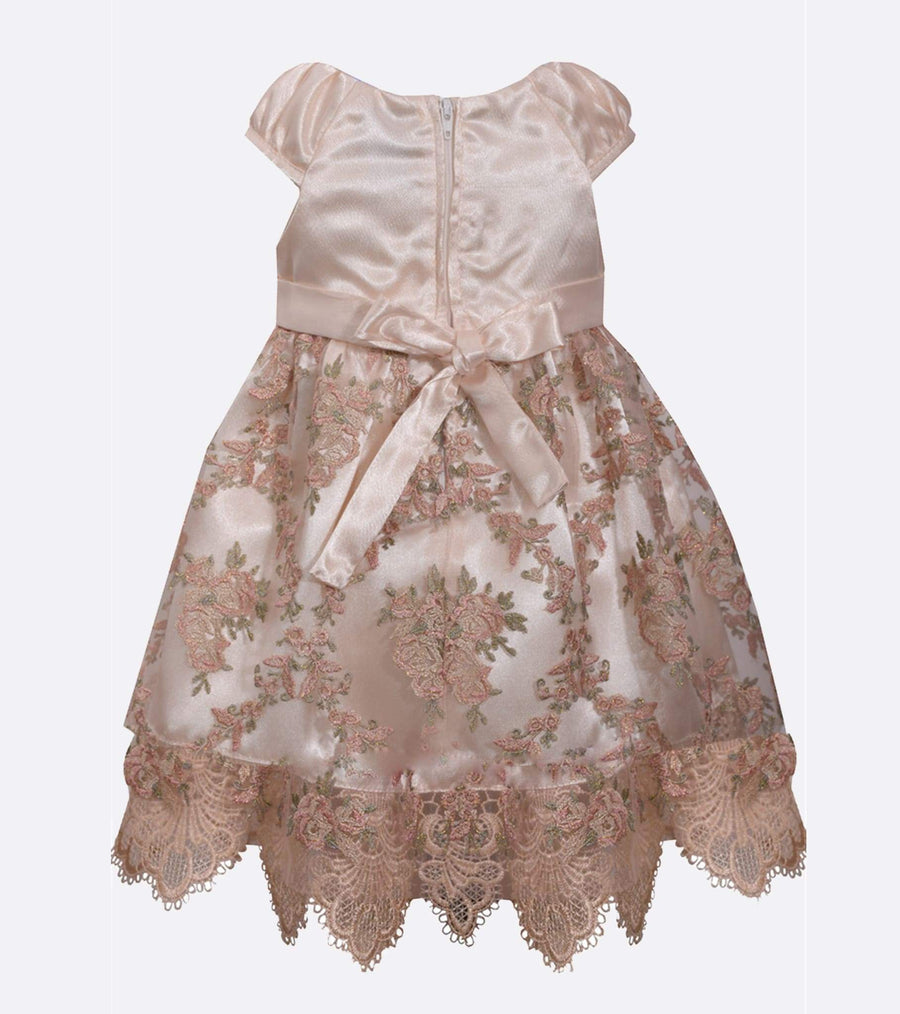 lace dress, girls floral dress, toddler special occasion dresses