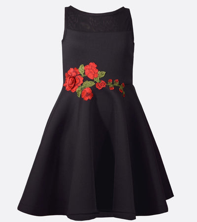 tween fashion, party dress, embroidered dress, tween, special occasion, party, black dress