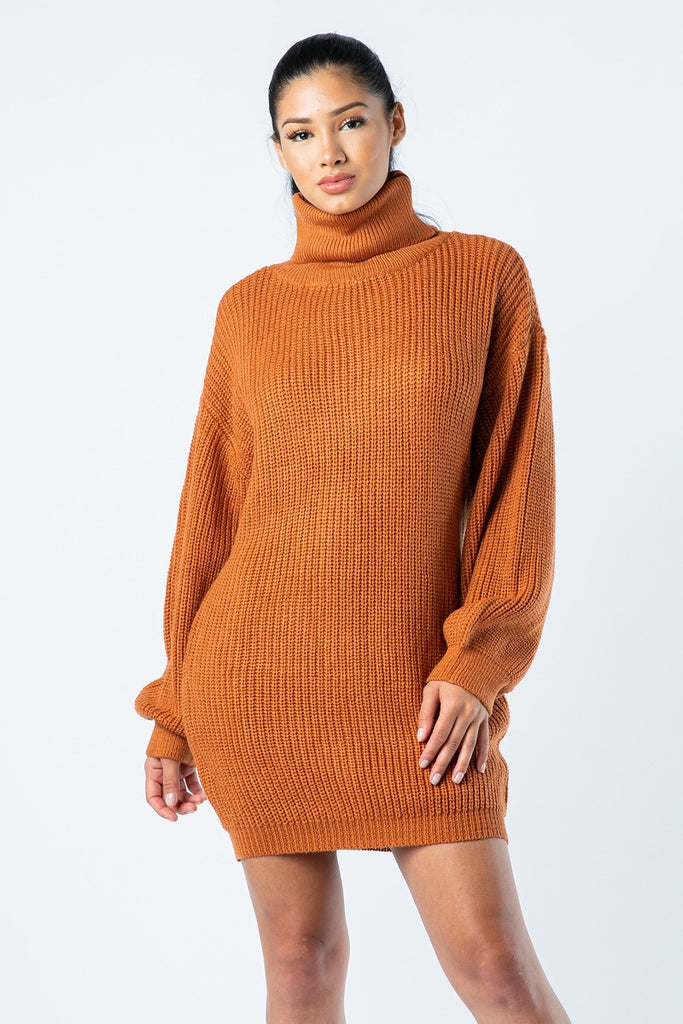 Daily Sweater Dress