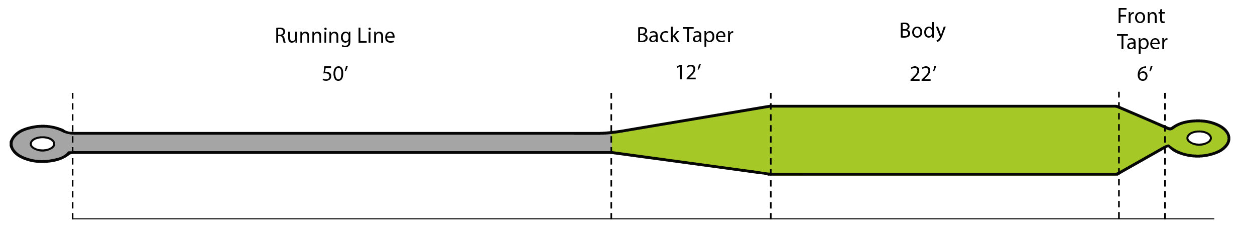 Fly Line Head Graphic