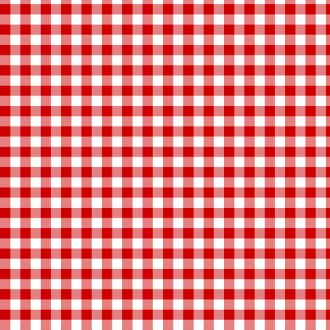 Gingham Mini Checks Red