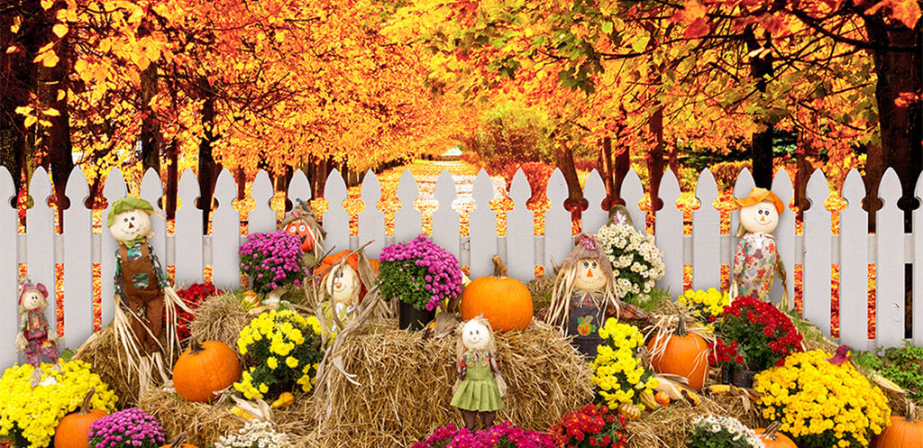 Let's grab the tail of autumn-hold an autumn party!