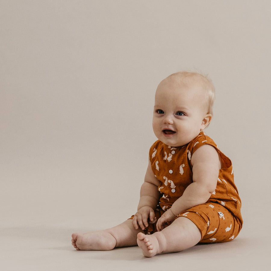 MAY ROMPER - INDIAN PAISLEY CINNAMON