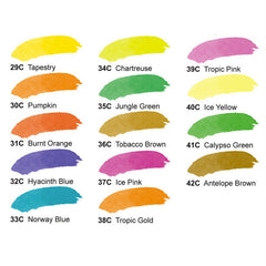 Dr. Ph. Martin's Radiant Concentrated Watercolor 15mL SET C - Color Chart