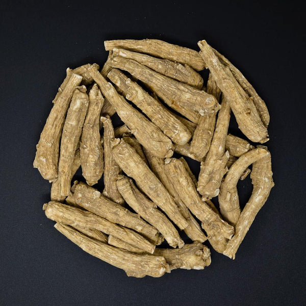 #32 Wisconsin Ginseng Long - X-Large