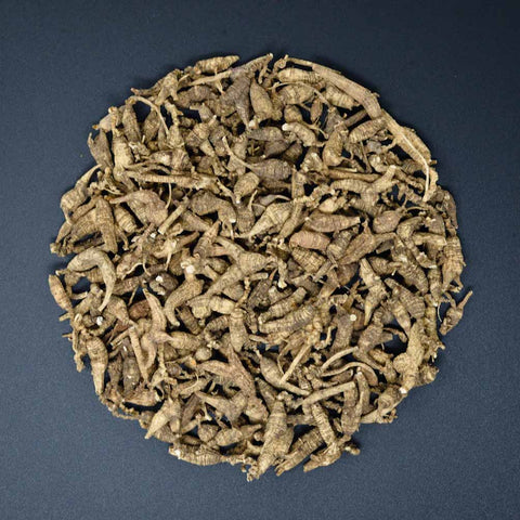 #85 Wild Ginseng Short Small 3oz