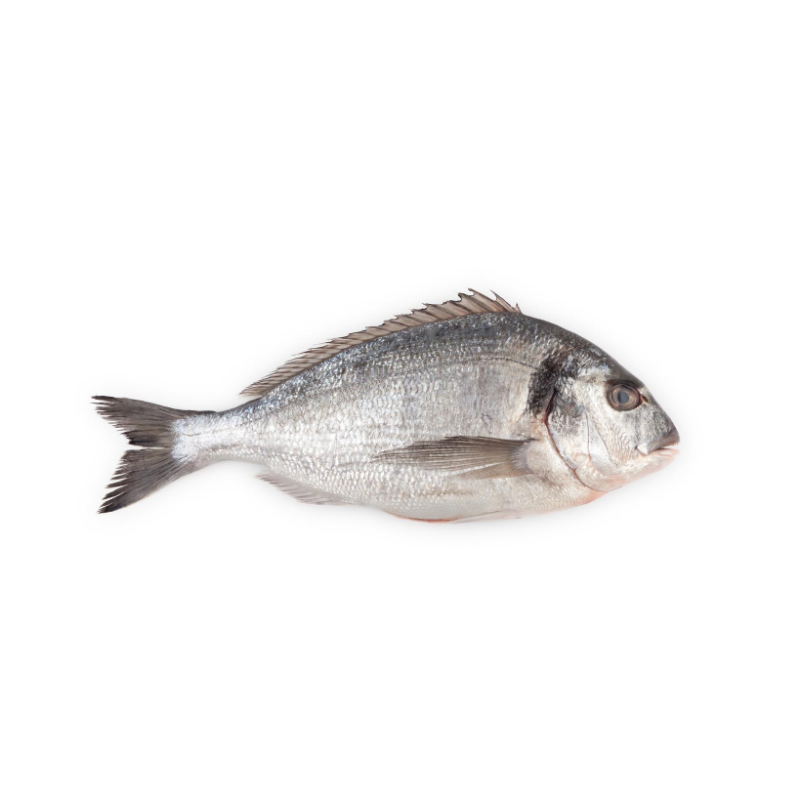 Fresh Sea Bream Whole Gutted and Cleaned - 300g Approx x 2
