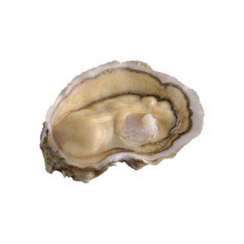 Fresh Oysters Fine De Royale - 12 Pieces