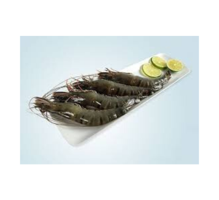 Black Tiger Shrimps Head On Super Jumbo (Frozen) - 1kg