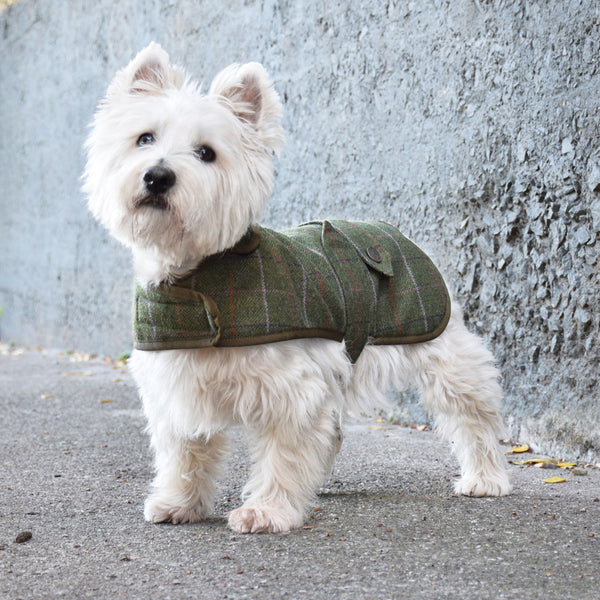 Olive Wool Tweed and Sherpa Fleece Coat