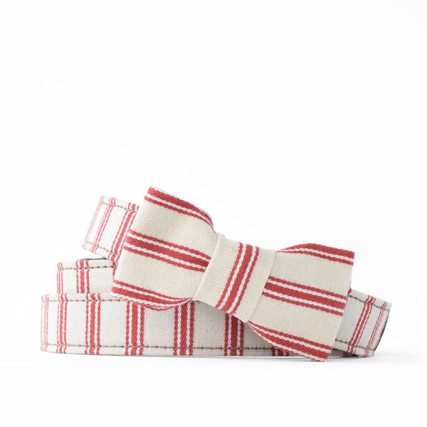 Cranberry Organic Ticking Bow Tie