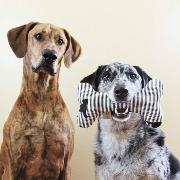 Labrador Stripe Linen Squeaky Bone Toy