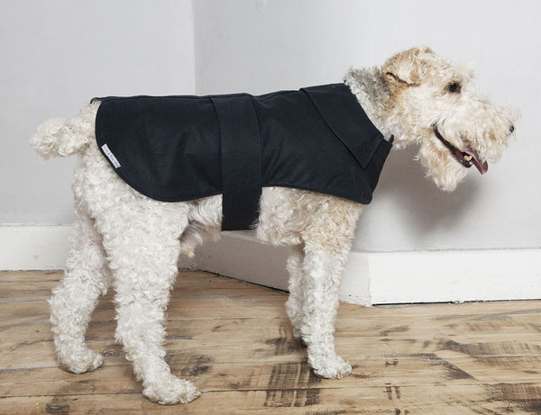 Mutts & Hounds Navy Waxed Cotton and Fleece Dog Coat