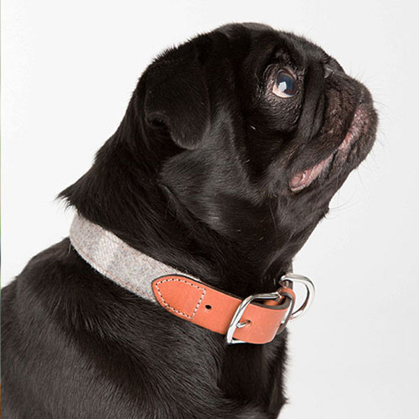 Mutts & Hounds Slate Tweed and Leather Dog Collar