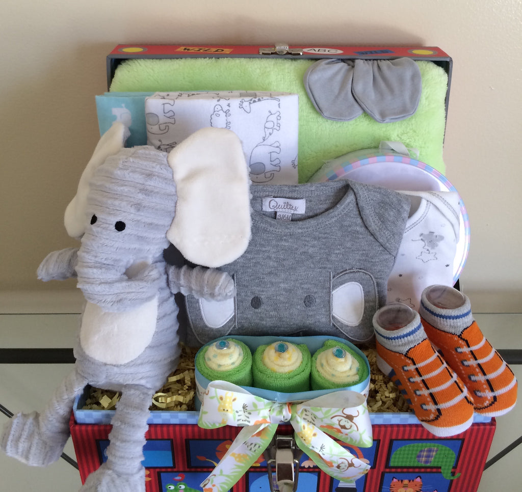 Jungle School Baby Boy Gift Basket