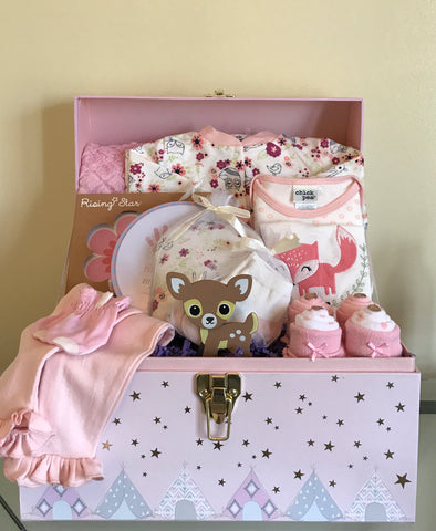 Little Woodland Animals Baby Girl Gift Basket