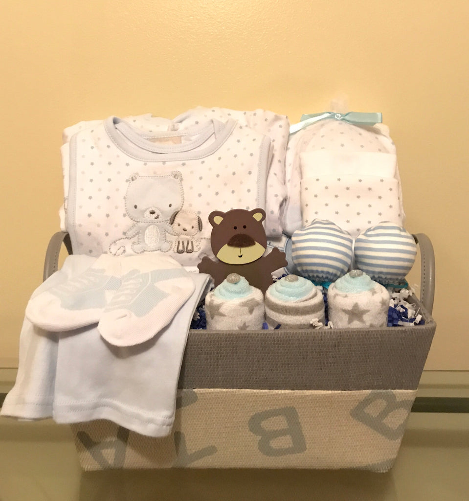Teddy Bear and Puppy Baby Boy Gift Basket