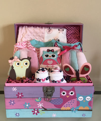 Owl and Friends Baby Girl Gift Basket