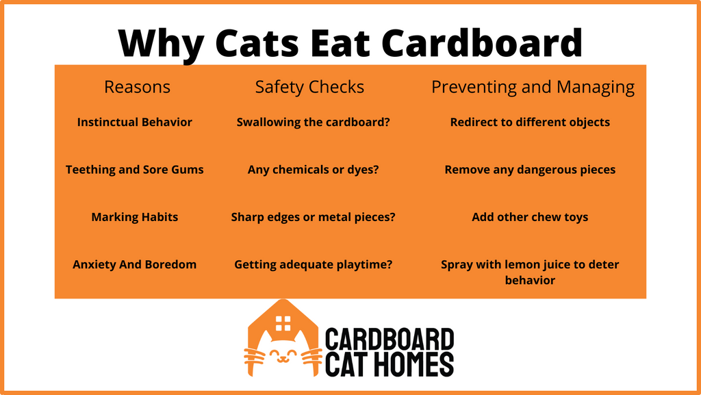 infographic cats eating cardboard explained