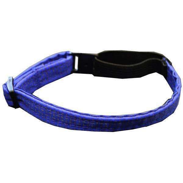 Glow Cat Adjustable Reflective Cat Collar in Blue