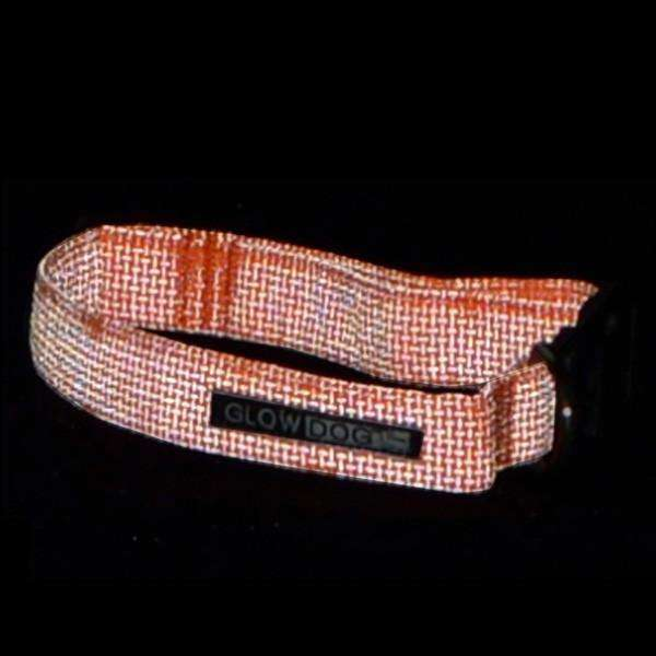 Glow Dog Adjustable Reflective Dog Collar in Orange