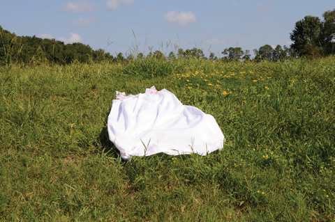 Allison Janae Hamilton: Untitled (House Dress in Field)