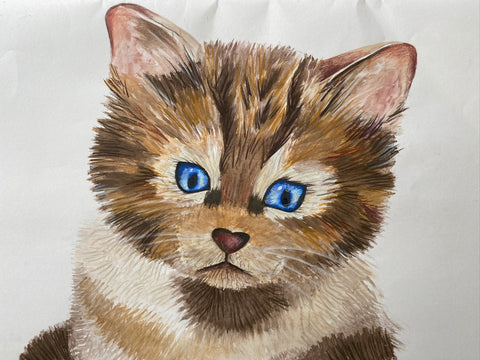 wildcat from scotland image drawing with coloured pencils