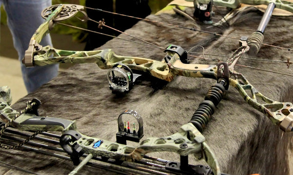 Choosing a Traditional Bow vs a Compound Bow for Survival