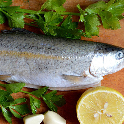 Fresh Whole Trout Image