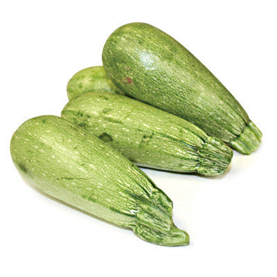 Mexican Squash Image