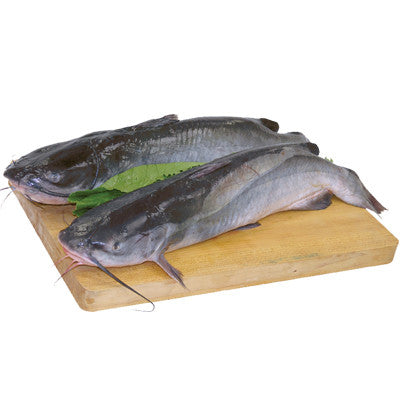 Fresh Whole Catfish, 2-3 lb Image