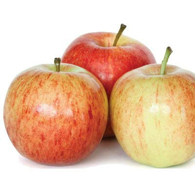 Organic Gala Apples Image