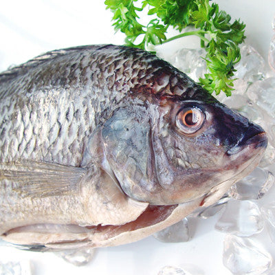 Whole Clean Tilapia Image